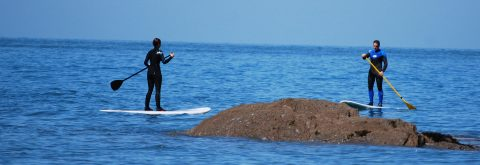 Stand Up Paddle Boarding in Croyde